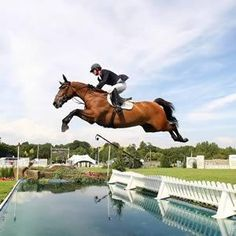 Google Image Result for http://www.teamgb.com/sites/default/files/styles/300_300/public/equestrian-Jumping-43.jpg
