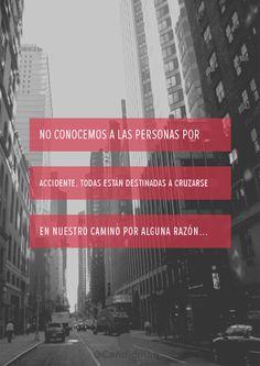 No conocemos a las personas por accidente, todas están destinadas a cruzarse en nuestro camino por alguna razón... #Citas #Frases @Candidman