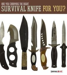 Are You Carrying The Right Survival Knife For You? | Find Out The Best Survival Weapons & Blades For Emergency Preparedness By Survival Life http://survivallife.com/2014/06/16/are-you-carrying-the-right-survival-knife-for-you/