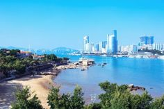 Are you planning a trip to Xiamen City in China? Read this essential and super informative guide to the best things to do in Xiamen and the main attractions Xiamen, In China, Stuff To Do, Things To Do, Harbor City, Peking, Hongkong, Main Attraction, Like A Local