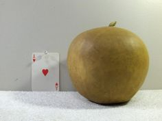 Apple Gourd Quality Hard-shell Dried Apple Gourd washed dried and ready For Crafts BIRDHOUSE...... AG#17 by midmowoodworks on Etsy