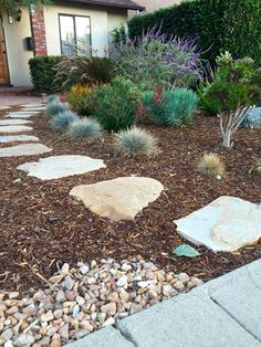 Paving stone pathway surrounded by mulch bark, and colorful low water plants in this Low water, drought resistant landscaping