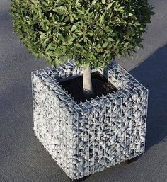 This gabion planter basket filled with grey crushed stone makes a beautiful architectural feature.