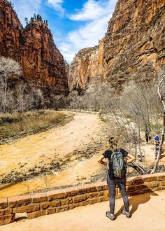 Planning to visit Zion National Park in Utah soon? On this blog is the ultimate guide on the best things to do in Zion National Park including best hikes, scenic drives, where to stay in Zion, how to get there and much more. Don't visit Utah before reading this Zion travel tips guide. #Utah #ZionNationalPark #Zion #travel #traveltips #nationalpark #nationalParks