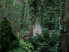 Abseits des Hauptstadttrubels und inmitten von Bäumen liegen die Gräber auf dem Zehlendorfer Waldfriedhof. Foto: Klaus-Dietmar Gabbert