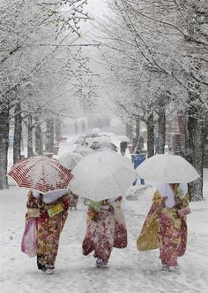 Snow in Tokyo - by Yuya Shino / Reuters  Japanese women in kimonos walk during heavy snowfall at Toshimaen amusement park in Tokyo, as they attend a ceremony celebrating Coming of Age Day, Jan. 14, 2013. Youths across Japan are honoured with special coming-of-age ceremonies when they reach the age of 20.