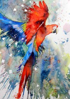 Ara #watercolors #paintings #art