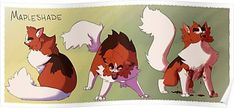 Stages by Simatra on DeviantArt Cat Character, Character Design, Cat Reference, Warrior Cats Art, Cat Boarding, Cat Drawing, Cat Art, Moose Art, Drawings