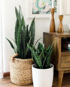 plant stand design ideas for indoor houseplants - page 38 of 67 - lo . plant stand design ideas for indoor houseplants - page 38 of 67 - lovein home. Modern Interior Design, Interior Design Living Room, Modern Interiors, Home Interiors, Living Room Designs, Asian Interior, Retro Home Decor, Diy Home Decor, Ranch Home Decor