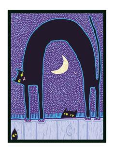Noitada dos Gatos