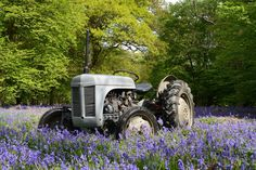 By Saul Underwood via Grey Fergies and Vintage Tractors on Facebook
