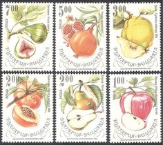 Bulgaria 1993 Fruit Trees/Plants/Food 6v set (s4430)
