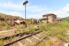 Dalle stazioni alle stalle Urbex Sicily