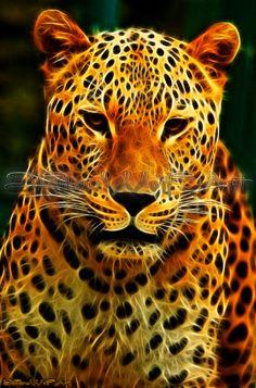 Fractal Leopard 5