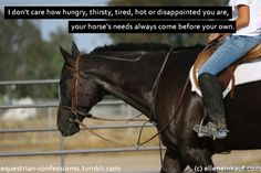 Equestrian Confessions