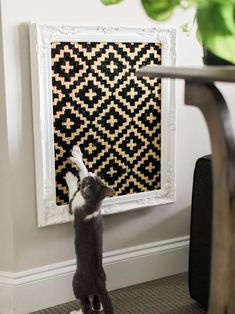 Cats diy wall new Ideas Cat Crafts, Easy Diy Crafts, Decor Crafts, Kids Crafts, Home Decor, Sheila E, Super Cat, Cat Scratcher, Cat Room
