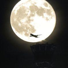 Instagram【harusa0222】さんの写真をピンしています。 《去年の9月に撮ったスーパームーンです。 スカイツリーのてっぺんに乗っかるところを狙いながら撮っていたら、ちょうどそこに飛行機が通過しました。  今夜は68年ぶりの大きさになるスーパームーンらしいのですが、残念ながら曇りか雨の予報なので、東京では見ることができなさそうです。  ちなみに宮古の今夜の星空指数は80らしいので、どこでもドアがあったら行きたいです(笑)  #東京 #スカイツリー #スーパームーン #満月 #飛行機 #シルエット #夜景 #夜景ら部 #ファインダー越しの私の世界 #ダレカニミセタイソラ #写真好きな人と繋がりたい #空推し部 #igで繋がる空 #tokyo #instasky #insta_sky_lovers #supermoon #jp_gallery #ptk_japan #Lovers_Nippon #loves_nippon #wu_japan #tokyocameraclub #phos_japan #bestjapanpics #team_jp_ #IGersJP…