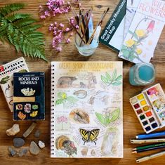 The Silvan Reverie: Favourite Nature Journal Resources Journal Covers, Journal Pages, Sketch Journal, Journal Art, Art Journaling, Journal Prompts For Kids, Journal Ideas, Nature Study, Art Nature