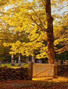 Old Cemetery in Newfane,Vermont