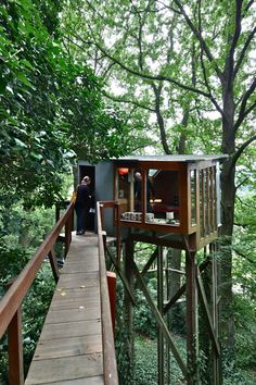 Treehouse via house walkway
