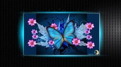 Fonds d'écran Art - Numérique Animaux BUTTERFLY Blue Glowing Happiness
