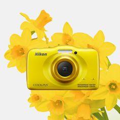 Wiosenne słońce złoci się na niebie, a pierwsze kwiaty wychylają się ku niebu! COOLPIX S32 w barwach żonkila będzie doskonałym towarzyszem spacerów.