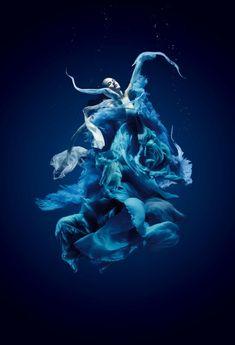 Underwater Photography ~by Santiago Esteban