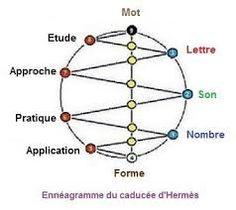 """Résultat de recherche d'images pour """"mbti hexagramme"""""""