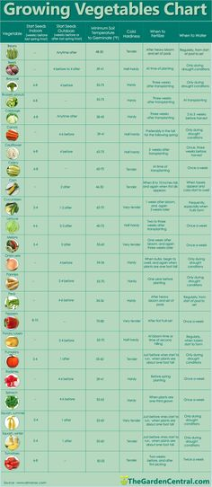 Growing Vegetables Chart with info about watering, fertilizing, growing seeds.