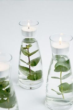 These floating greenery votives seem so fancy yet they're very simple. Just about anything from your yard would work great. Great for a simple decoration! diy decoration for home How to make floating greenery votives