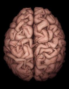 This is your brain on sex.  Any questions?