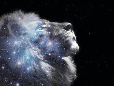 godsongsheart2heart:  LION OF JUDAH ~ HEARTBEAT OF HEAVEN