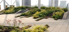 Bevis Marks Roof Terrace -London by Townshend Landscape Architects