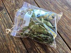Fig Leaf Tea - Garden Variety Life Fig Leaf Tea, Fig Recipes, Drink Recipes, Fig Leaves, Edible Plants, Fig Tree, Tea Blends, Herbal Tea, Wine Drinks