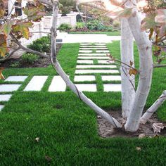 Modern Landscape Pavers Design, Pictures, Remodel, Decor and Ideas - page 14