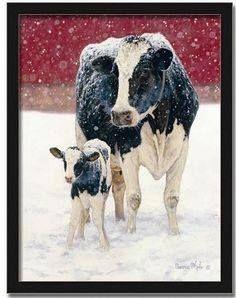 Birchwood Dairy Farm-Abbotsford