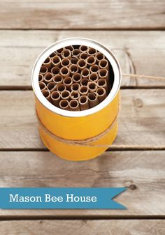 Welcome in summer with a DIY mason bee house the kids can help make!
