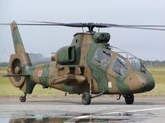Kawasaki OH-1 Ninja - Japanese Ground Self-Defense Force (JGSDF), Japan