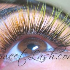 Where To Buy Eyelash Extensions Online And Is It Safe? | Http ...