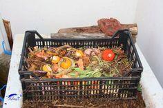 Cómo separar las lombrices del humus. Ecology, Wicker Baskets, Picnic, Gardening, Ideas, Gardens, Vegetable Gardening, Worm Composting, Homemade Bird Feeders