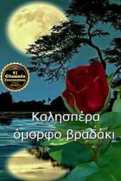 Beautiful Pink Roses, Good Night, Movies, Movie Posters, Nighty Night, Films, Film Poster, Cinema, Movie