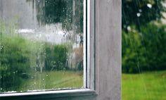 Rain love.....