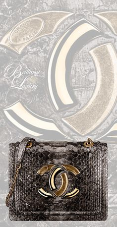 Brilliant Luxury by Emmy DE ♦Chanel Gold Python Flap Bag FW 2016/17