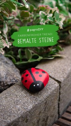 #rockpainting #stonepainting #paintedrocks #steinebemalen #pagroDIY #pagro Stone Painting, Painted Rocks, Diy, How To Relieve Stress, Painting On Stones, Creative Ideas, Do Crafts, Bricolage, Rock Painting