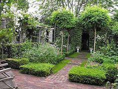 foto van de tuin