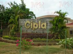 Drug maker Cipla is expected to report a whopping 47 percent growth:  #stockmarketnews #dailystockmarketnews #indianstockmarketnews #stockmarkettrading #stockmarketnewstoday #dailystockmarketreport #stockmarketnewsindia #commodittiesnews #commoditynews #MCRWorld #drugmakar #cipla