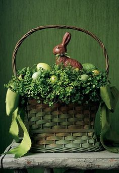 Vintage Easter Decorations Cute green basket with greenery, green eggs and chocolate bunny! Cute for Easter. Hoppy Easter, Easter Eggs, Easter Bunny, Easter Food, Easter Parade, Easter Colors, Easter Celebration, Easter Holidays, Easter Table