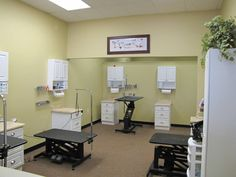 -Repinned- Spa 4 paws. Grooming stations.