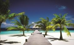 fototapet ponton Hawaii Planes, Disney, Golf Courses, Hawaii, Past, Wall Art, Wallpaper, Outdoor Decor, Design