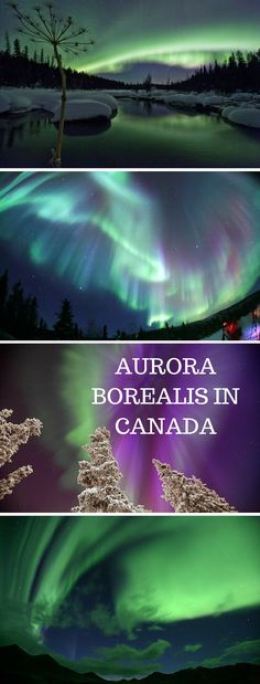 Welcome to the Aurora Borealis, the best natural light show north of the 60th parallel.